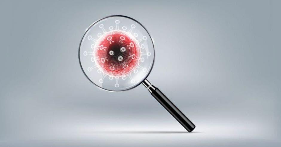 una lupa mostrando de cerca el virus