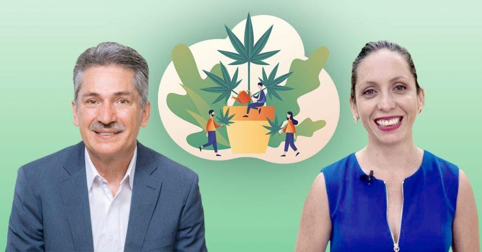 Los aspirantes Welmer Ramos y Carolina Hidalgo del PAC, sí impulsarían la legalización de la marihuana recreativa. En la foto una imagen de hoja de marihuana al fondo y los dos candidatos de frente.
