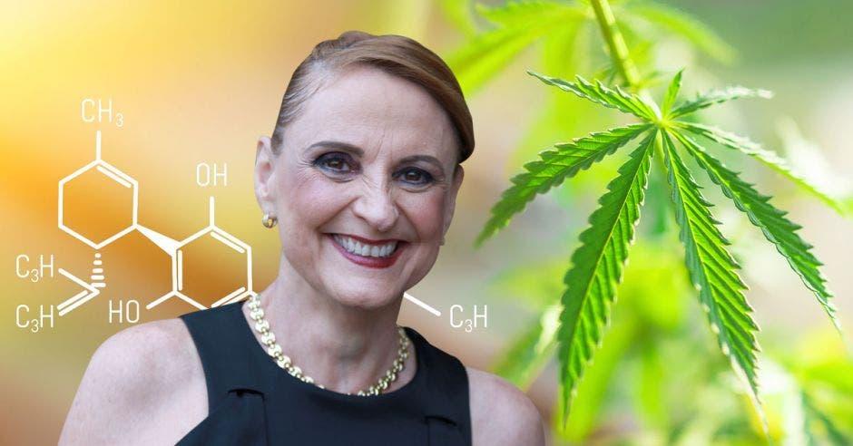 """""""Estamos hablando de más inversión, empleo, calidad de vida para las personas enfermas y diversificación agrícola. Son miles de empleos"""", dijo Zoila Volio, proponente del proyecto, al referirse a los beneficios de la industriad el cáñamo y la marihuana medicinal. Archivo-Shutterstock/La República."""