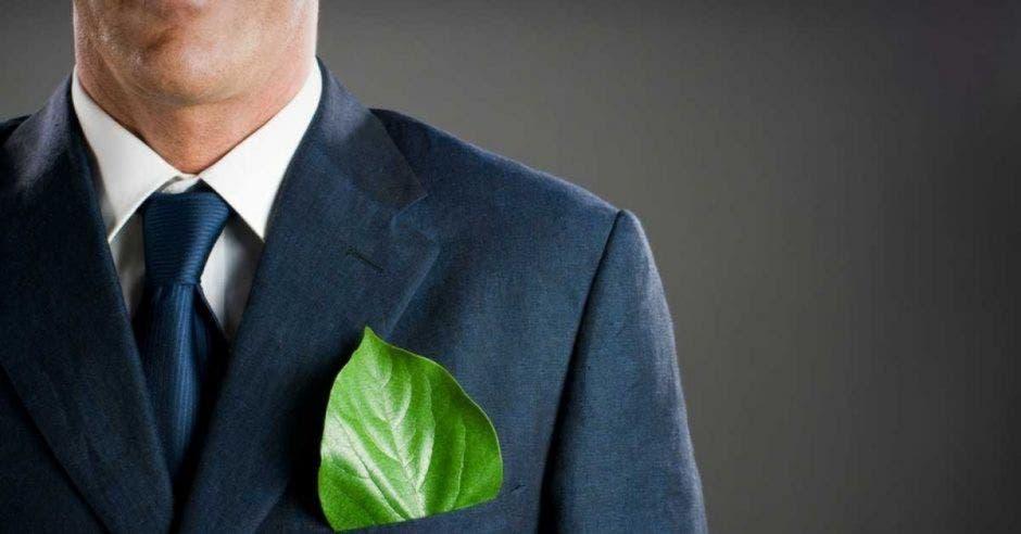 Hombre con hoja verde en un traje de vestir.