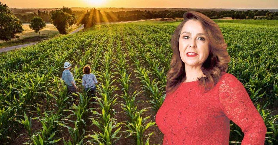 Mujer de rojo frente a campo agrícola