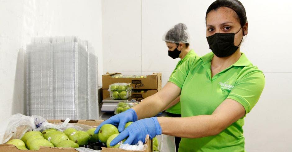 Mujer con blusa verde empacando manzanas