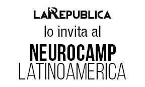 Neurocamp latinoamerica